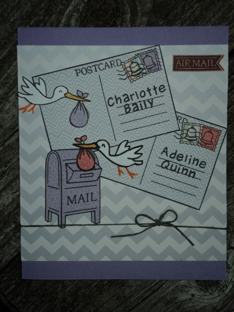 Chaddie card 1
